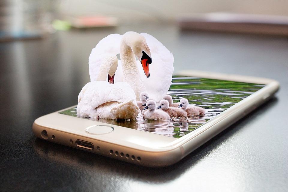 najlepsze aplikacje na telefon